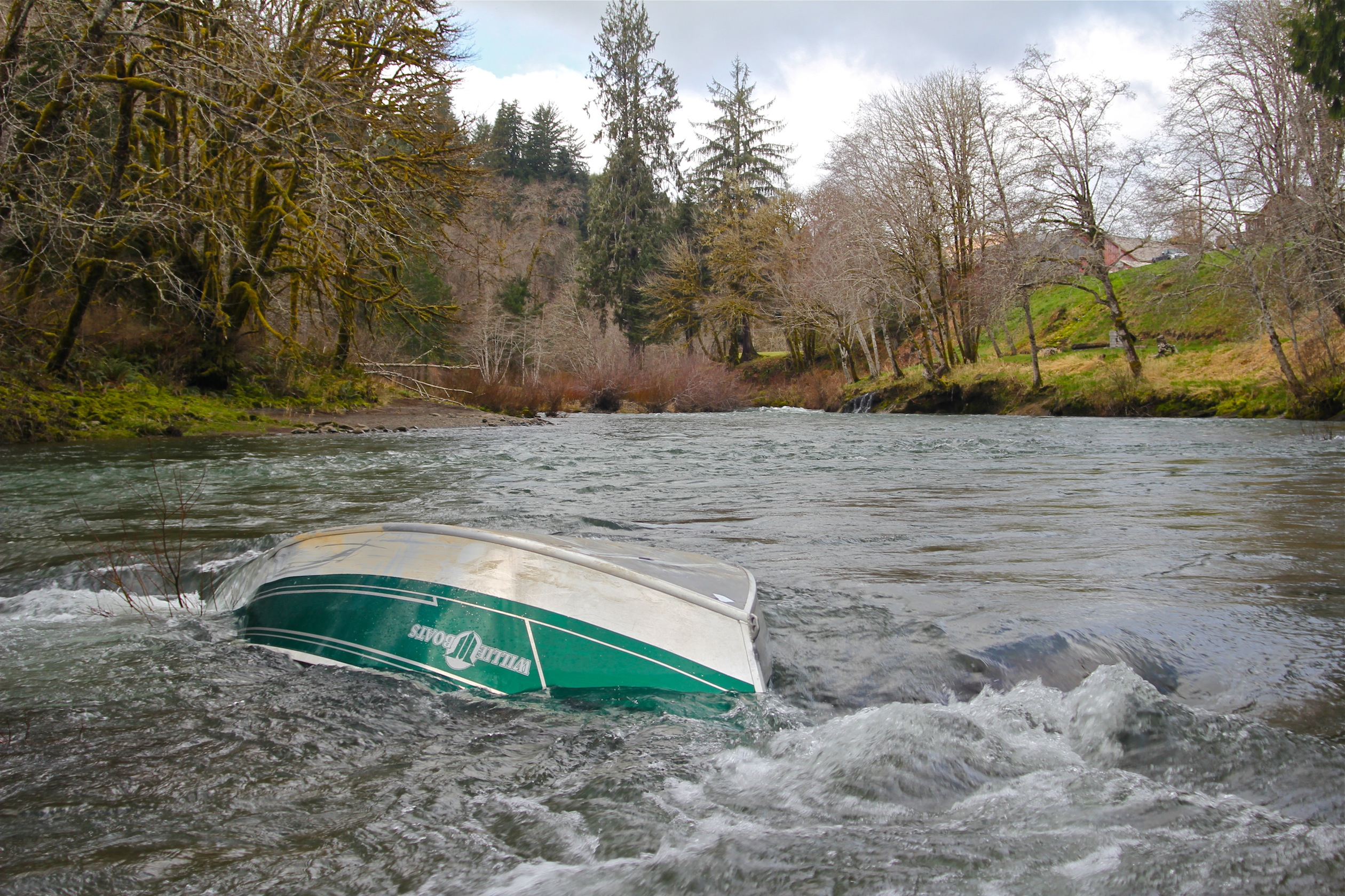 Winter steelhead and unicorns in the oregon rainforest for River fishing tips